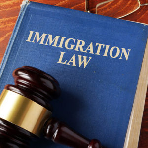 Houston Immigration Law Book